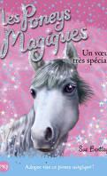 Les Poneys magiques, Tome 2 : Un vœu très spécial