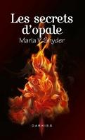 Les Portes du secret, Tome 3 : Les Secrets d'opale