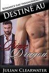 couverture Destiné au prince Dragon