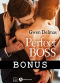 Perfect Boss - Les Bonus