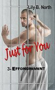Just For You, Tome 3 : Effondrement