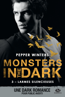 Couverture du livre : Monsters in the Dark, Tome 3 : Larmes silencieuses