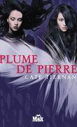 Balefire, Tome 3 : Une Plume de Pierre