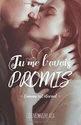 Couverture du livre : Tu me l'avais promis...