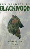 Les Secrets de Blackwood, Tome 1 : De lune et d'argent