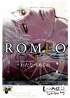D.S.P Romeo, tome 1