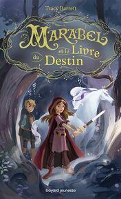Litterature Jeunesse Fantasy Medievale 1 Livres