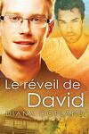 Delta restorations, Tome 1 : Le réveil de David