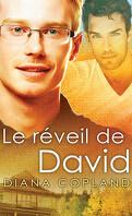 Delta Restauration, Tome 1 : Le Réveil de David