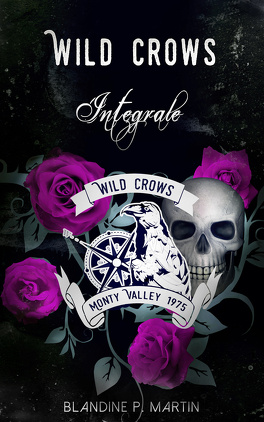 Wild Crows l'intégrale  Wild-crows---l-integrale-1146253-264-432