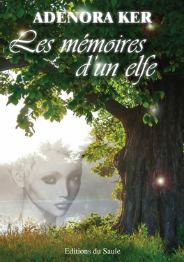 Couverture du livre : Les mémoires d'un elfe