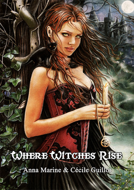 Couverture du livre : Là où s'élèvent les sorcières