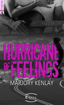 Hurricane of feelings