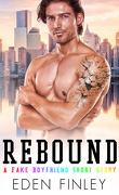 Faux petit-ami, Tome 2.5 : Rebound