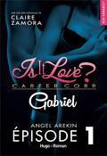 GABRIEL (Is It Love ?), Tome 1