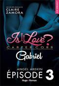 GABRIEL (Is It Love?), Tome 3