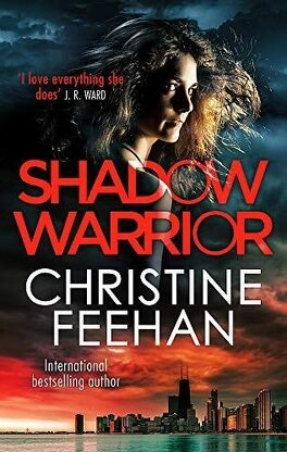 Shadow Riders, tome 4 : Shadow Warrior