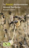 La fourmi moissonneuse Messor barbarus Biologie et soins