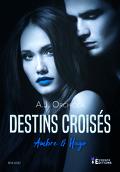 Destins croisés, Tome 3 : Ambre & Hugo