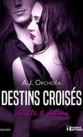 Destins croisés, Tome 1 : Violette & Antoine