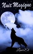 Nuit magique, Tome 1