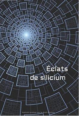 Couverture du livre : éclat de silicium