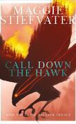 Dreamer, Tome 1 : Call Down the Hawk