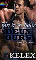 Bear Mountain, Tome 9 : Un beta pour deux ours