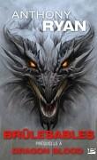 Dragon Blood, Tome 0.5 : Brûlesables