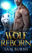 The Wolves of Kismet, Tome 3 : Wolf Reborn