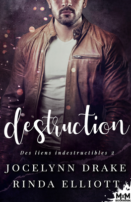 Couverture du livre : Des liens indestructibles, Tome 2 : Destruction