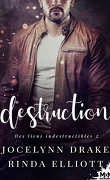 Des liens indestructibles, Tome 2 : Destruction