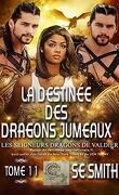 Les Seigneurs dragons de Valdier, Tome 11 : La Destinée des dragons jumeaux