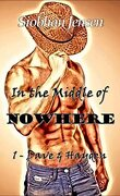 In the middle of nowhere, Tome 1 : Dave & Hayden