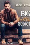 couverture Big little secret