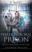 Dark Fae Paranormal Prison, Tome 1 : Shadowborn Prison