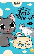 Les Chaventures de Taï et mamie Sue, Tome 3