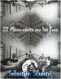 22 Micro-récits sur les fous