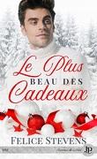 Memories, Tome 2,5 : Le Plus Beau des Cadeaux