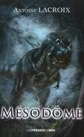Mesodôme