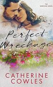 Wrecked, Tome 2: Perfect Wreckage