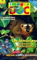 Images doc : Les lémuriens