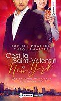 Love in New York, Tome 2 : C'est la Saint-Valentin à New York