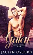 Sons of the Fallen, Tome 1 : Galen