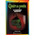 Chair de poule, tome 29 : Le Fantôme décapité