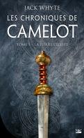 Les Chroniques de Camelot, Tome 1 : La Pierre céleste