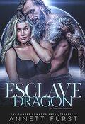 Le Tribut des dragons, Tome 2 : Esclave du dragon