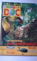 Images doc : Les animaux de la forêt tropicale