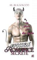 Impossible, Tome 1 : Romance secrète