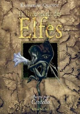 Couverture du livre : Le livre secret des elfes